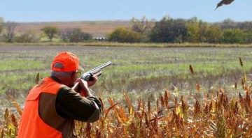 The Ringneck Ranch – Upland Bird Hunting Lodge in Kansas for Pheasant, Quail and Grouse with Dogs in 2021 2022