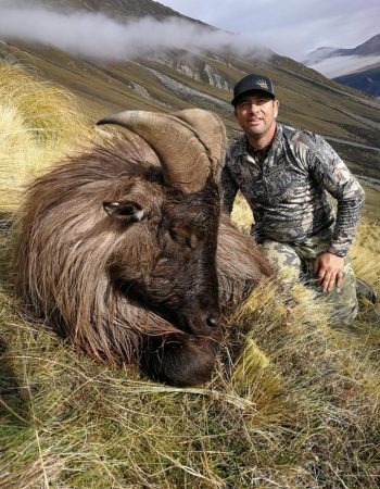 Four Seasons Safaris – New Zealand Fair Chase Big Game Hunting Outfitters