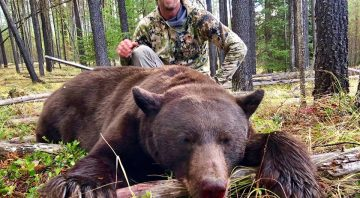 Linehan Outfitting Company – Montana Hunting Outfitters for Elk, Moose, Bighorn Sheep, Mountain Goat, Whitetail and Mule Deer Trophy Hunts.