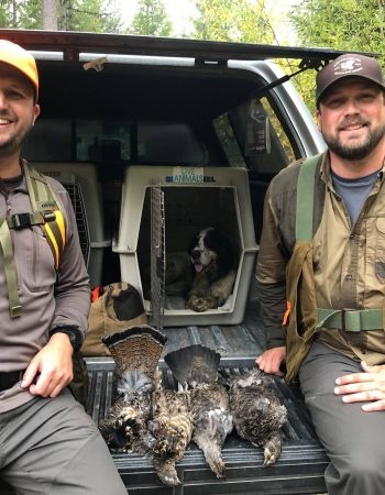 Linehan Outfitting Company –  Hunting Outfitters in Montana for Elk, Moose, Mountain Goat, Big Horn Sheep, Black Bear, Wolf, Whitetail and Mule Deer.