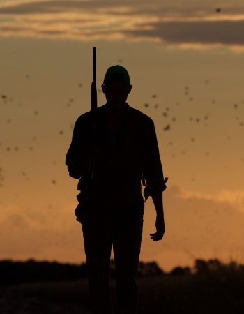 Bolivian Adventures – All-Inclusive High-Volume Dove Hunts in Bolivia