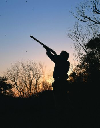 Estancia San Juan – Affordable Wingshooting Packages for High Volume Pigeon, Dove, Perdiz and Duck Hunting in Uruguay
