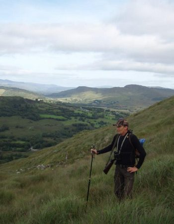 Ireland Hunting Outfitters – Affordable Hunting Trips in Ireland for Sika Deer Hunts, Pigeon Shoots and Trout Fishing