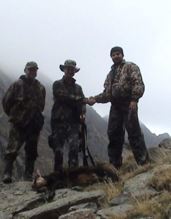 Unforgettable Hunting – Trophy Brown Bear, Red Stag, Roe Deer, Fallow and Chamois Hunts in Romania.