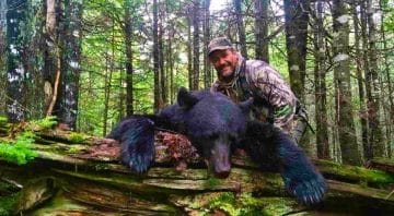 New Brunswick Outfitters – Affordable Hunting Trips for Spring and Fall Black Bear and Moose in Canada in 2021 2022 2023