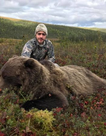 Tyrrell's Trails – Outfitter in Alaska Brooks Range for Guided Hunts for Dall Sheep, Moose, Grizzly Bear and Caribou.