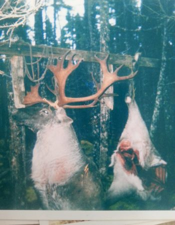 Newfoundland Hunting Outfitters – Moose, Black Bear and Caribou Hunting Packages and Prices in Canada