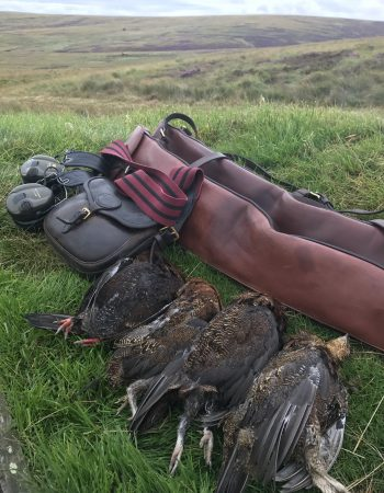 Royal Outfitters UK – Red Stag Hunting and Driven Bird Pheasant, Grouse and Partridge Shooting in England and Scotland