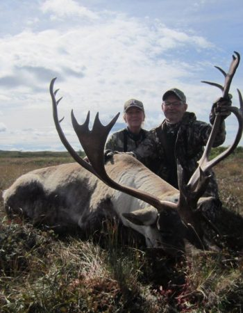 Newfoundland Hunting Outfitters – Affordable Hunting Packages and Prices for Moose, Black Bear and Woodland Caribou