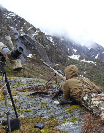 Southern Lakes Safaris – South Island New Zealand Red Stag, Tahr and Chamois Hunting Outfitters