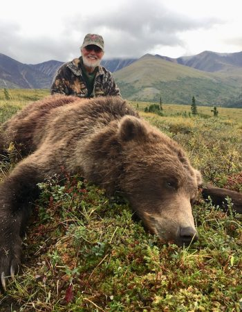 Alaska Grizzly Guides – Grizzly, Moose, Caribou and Dall Sheep Hunting Outfitters