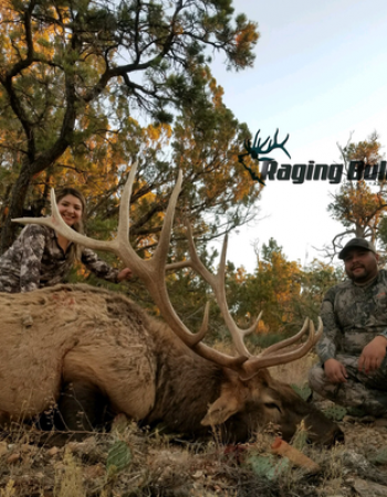 Raging Bull Outfitters – Arizona Hunting Outfitters for Elk, Mule Deer, Pronghorn, Black Bear and Cougar