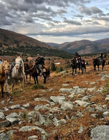 NorthCurl Outfitters – Yukon Horseback Hunts for Trophy Dall Sheep, Moose, Grizzly and Wolf