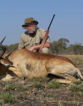 South Africa Hunting Trips – Plains Game, Big Game and Dangerous Game Trophy Hunting Safaris