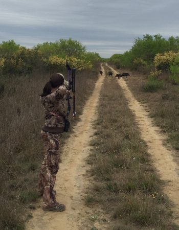 South Texas Hunting Outfitters – Rifle and Bowhunting for Aoudad, Whitetail Deer, Axis Deer, Turkey and Javelina