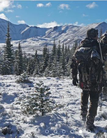 Williston Lake Outfitters – British Columbia Hunting Trips for Stone Sheep, Mountain Goat, Moose, Black Bear and Elk
