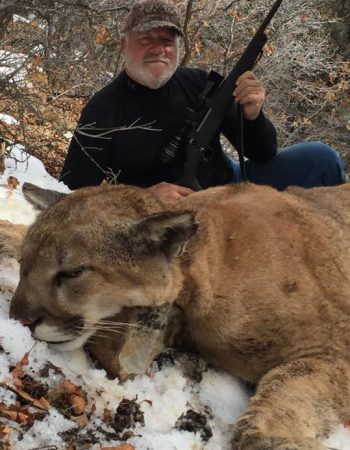 Colorado Cougar Hunting Guides – Affordable Mountain Lion Hunting Outfitters in Western Colorado near Grand Junction 2021 2022