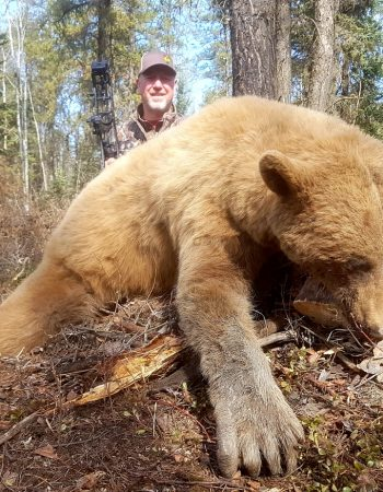 Alberta Hunting Outfitters – Hunting Trips in Alberta for Whitetail, Archery Mule Deer, Black Bear and Wolf