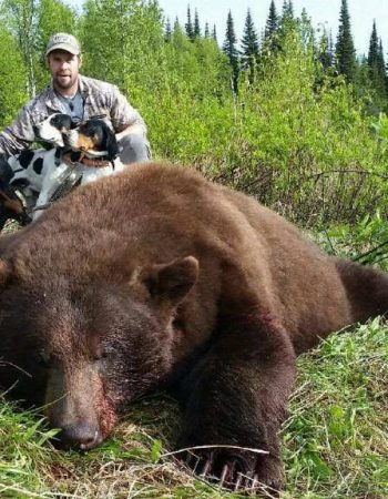 British Columbia Hunting Trips – Big Game Hunting for Bighorn Sheep, Black Bear, Elk, Moose, Mountain Goats, Mountain Lions and Wolf