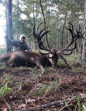 Double Drop Hunting Ranch – Hunt Trophy Whitetail Deer, African Game and Exotic Game on a Hunting Ranch in Texas