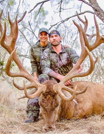 RecordBuck Ranch – Texas High Fence Hunting Ranch for African Game, Exotics, Elk and Whitetail Deer