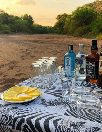 Mozambique Hunting Outfitters – Hunt Lion, Leopard, Buffalo in the Nhacainga Hunting Conservancy, Coutada 9