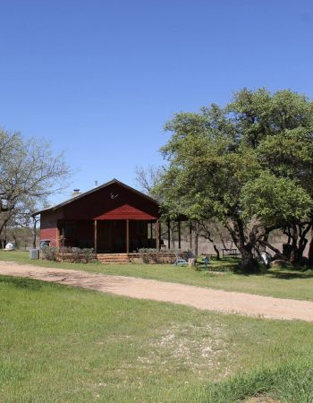 3 Amigos Hunting Ranch – Texas High-Fence Whitetail Deer and Exotic Hunts near Dallas Fort Worth