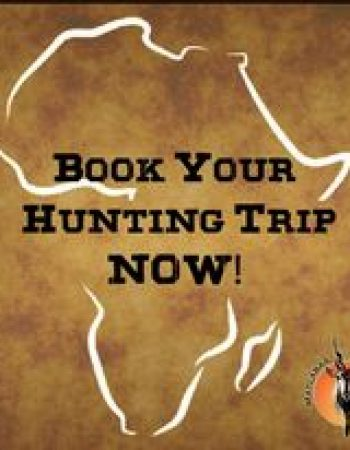 Matlabas Game Hunters – Free-Range, Fair Chase Plains Game Bow-Hunting Safari Specialists