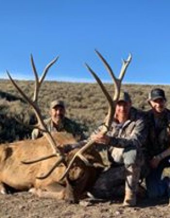 Homestead Hunting Ranch – Western Colorado Trophy Elk Hunting Ranch near Montrose