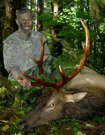 Roosevelt Elk Outfitters – Washington State Guided Rifle, Muzzleloader and Archery Elk and Black Bear Hunting Trips