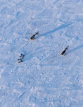 Alaska Wilderness Expeditions – Fly-in Air Taxi DIY Hunting for Bison Buffalo, Dall Sheep, Moose, Caribou, Grizzly Brown Bears & Wolves