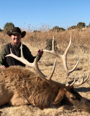 Colorado Hunting Outfitters – Fully Guided Hunts for Elk, Mule Deer, Pronghorn, Black Bear, Mountain Lion and Rocky Mountain Bighorn Sheep 2021 2022