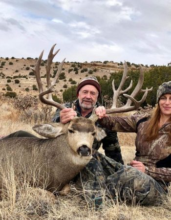 Colorado Hunting Outfitters – Fully Guided Hunts for Elk, Mule Deer, Pronghorn, Black Bear, Mountain Lion and Rocky Mountain Bighorn Sheep
